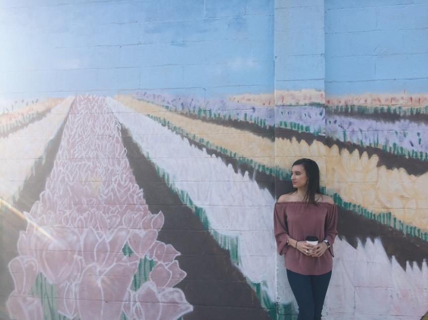 The Murals ofNashville